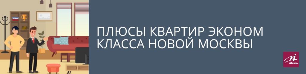 Плюсы квартир эконом класса Новой Москвы